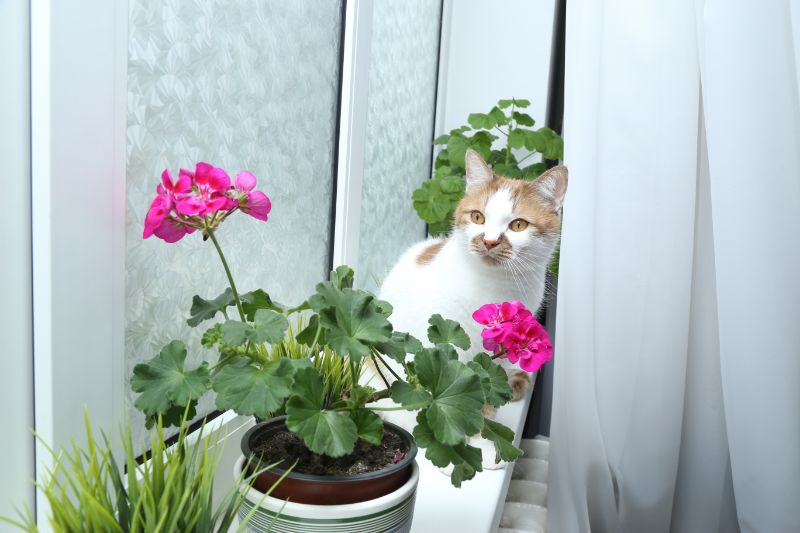 cat next to flower pot